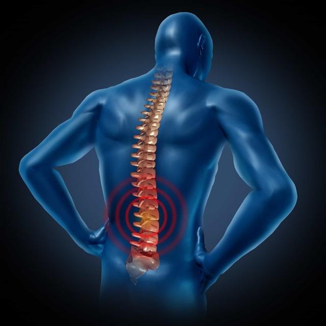 Каким образом происходит развитие остеохондроза?